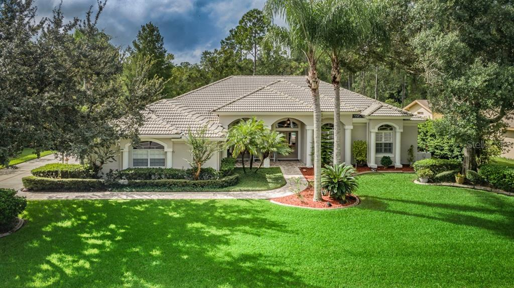 5650 STAG THICKET LANE Property Photo - PALM HARBOR, FL real estate listing