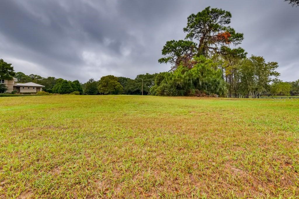 Austin Drive Property Photo