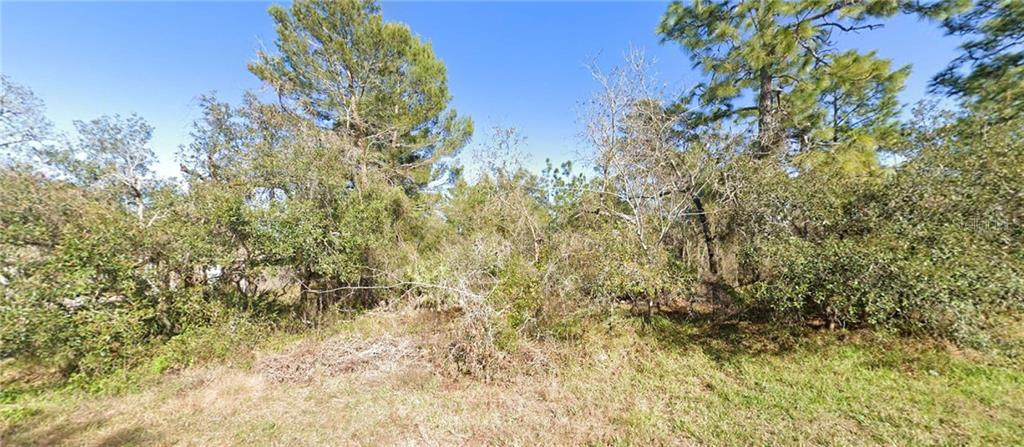 10315 Dotted Wren Avenue Property Photo