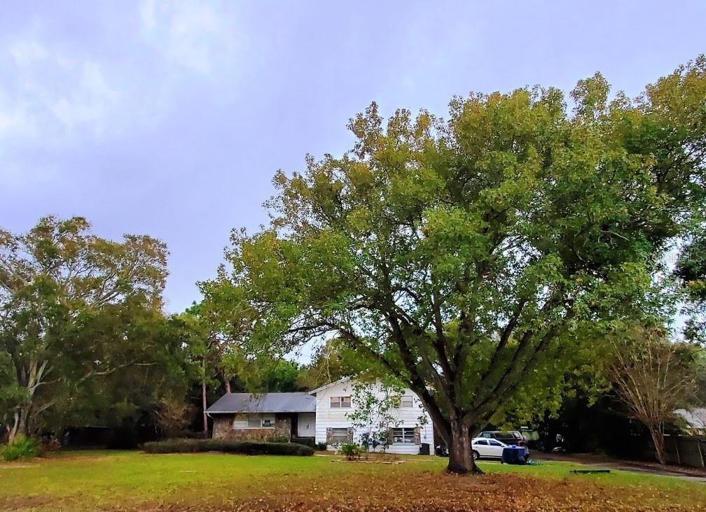 13404 106TH AVENUE Property Photo - LARGO, FL real estate listing