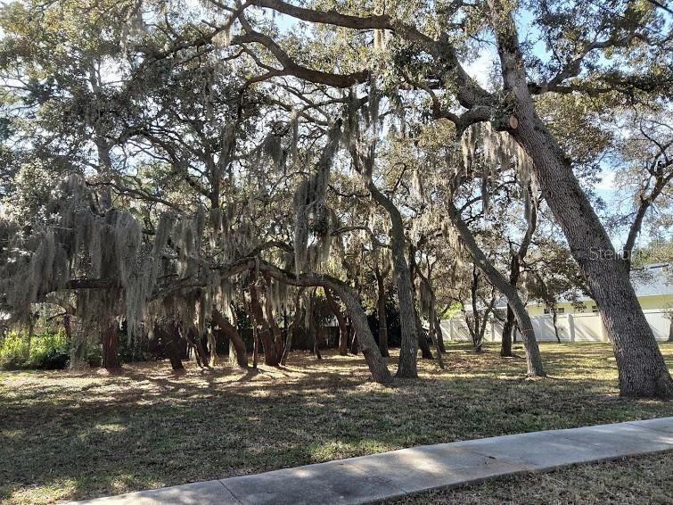 Gulf Beach Boulevard Property Photo