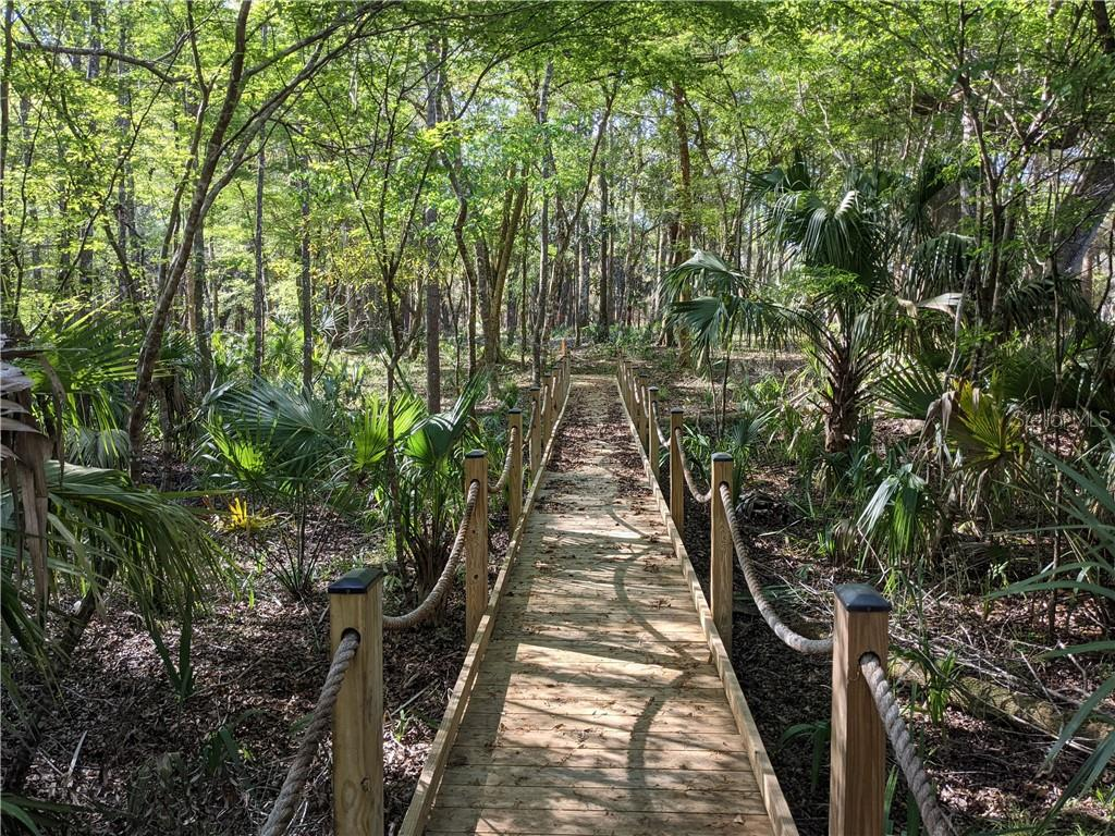 13651 W FOSS GROVES PATH Property Photo - INGLIS, FL real estate listing