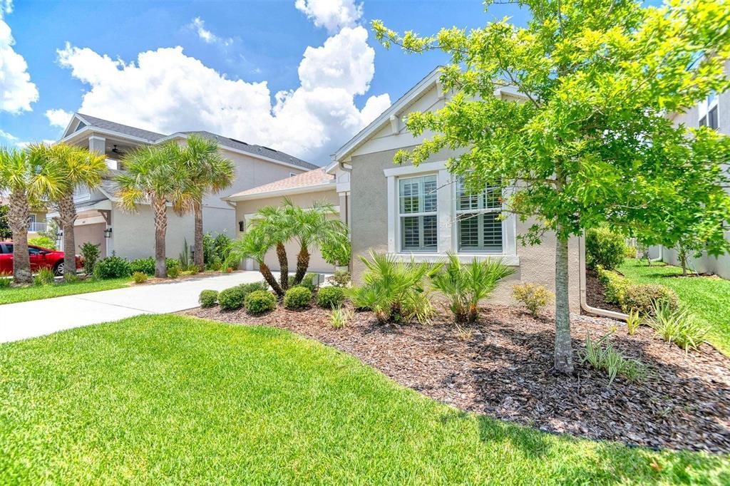 8035 Clementine Lane Property Photo