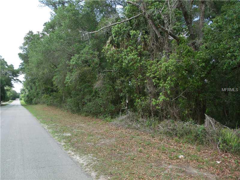 E LANSDOWNE AVENUE Property Photo - ORANGE CITY, FL real estate listing