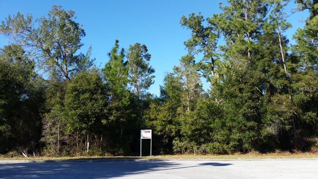 COURTLAND BLVD Property Photo - DELTONA, FL real estate listing