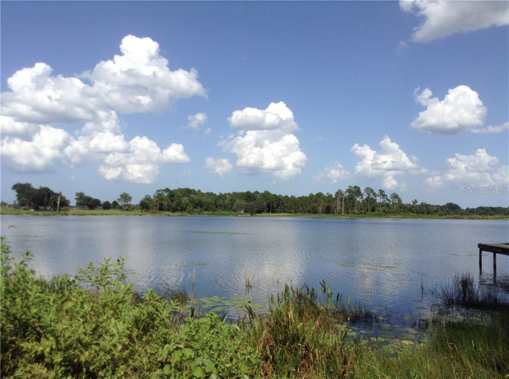 2223 MCBRIDE ROAD Property Photo - SEVILLE, FL real estate listing