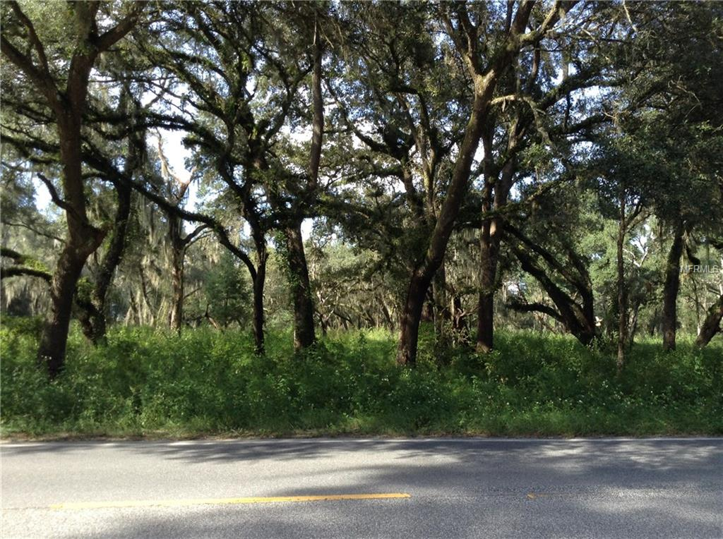 COUNTY ROAD 308 Property Photo - CRESCENT CITY, FL real estate listing