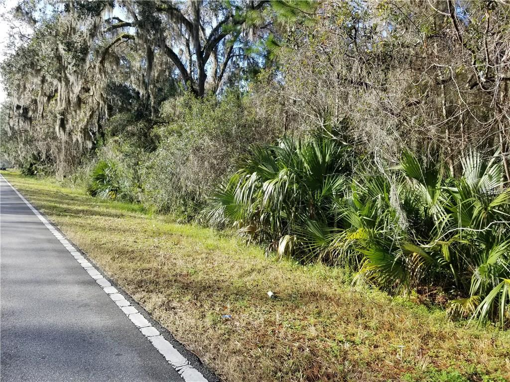 1239 COUNTY ROAD 309 Property Photo - CRESCENT CITY, FL real estate listing