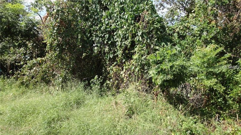 UNDERHILL BRANCH RD Property Photo - OSTEEN, FL real estate listing