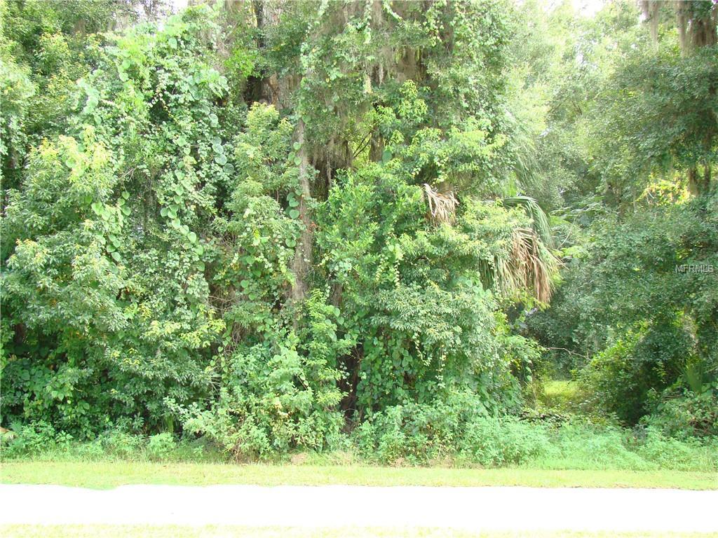 E PENNSYLVANIA AVENUE Property Photo - LAKE HELEN, FL real estate listing
