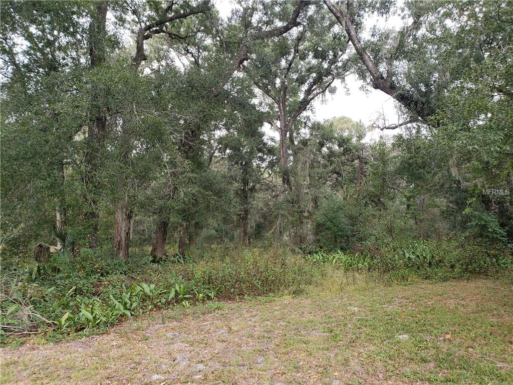 928 REYNOLDS RD Property Photo - DE LEON SPRINGS, FL real estate listing