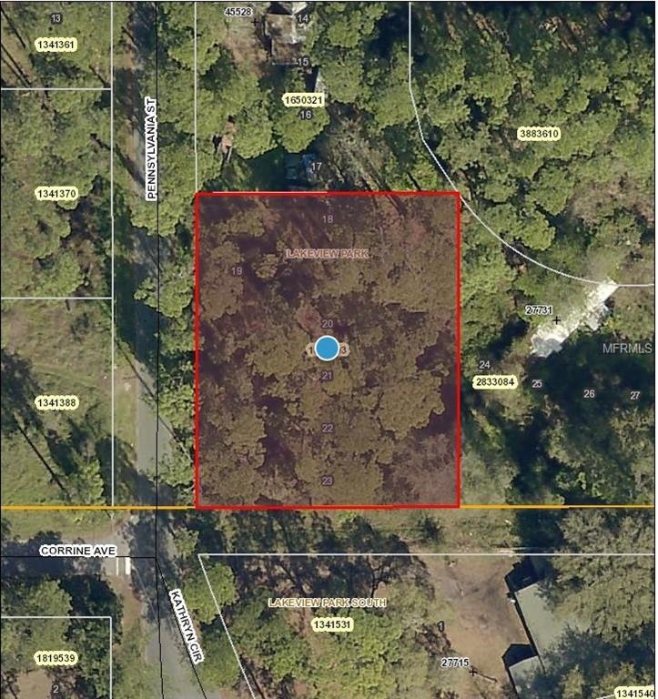 PENNSYLVANIA ST Property Photo - PAISLEY, FL real estate listing