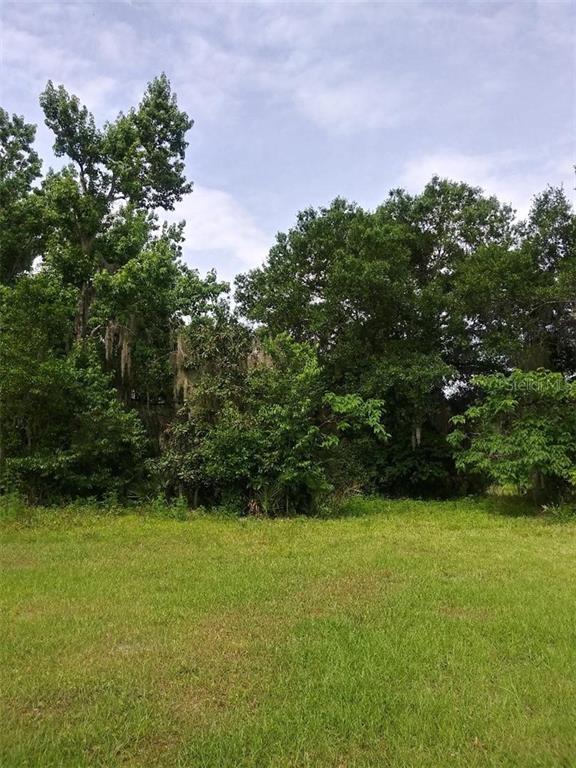 THOMAS AVENUE Property Photo - OSTEEN, FL real estate listing