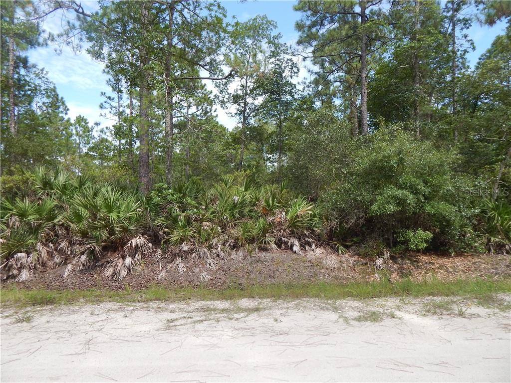 9TH AVE Property Photo - DELAND, FL real estate listing