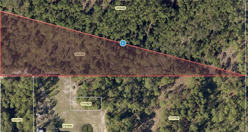 POLAR BEAR RD Property Photo - PAISLEY, FL real estate listing