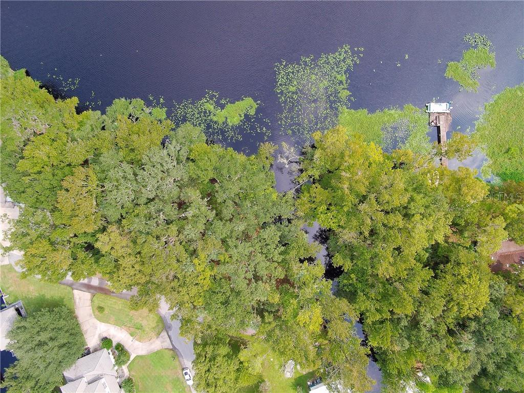 0 HICKORY RD Property Photo - ASTOR, FL real estate listing