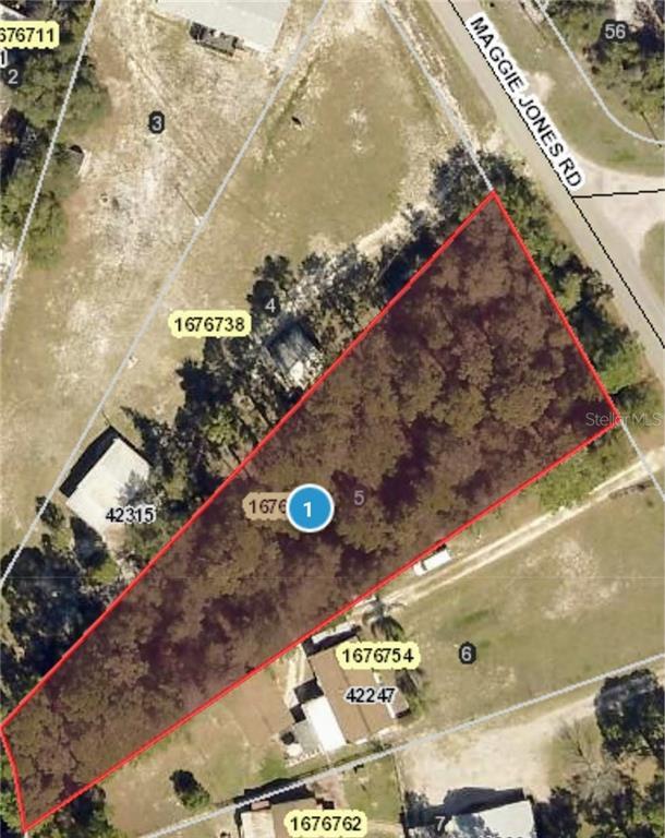 MAGGIE JONES RD Property Photo - PAISLEY, FL real estate listing