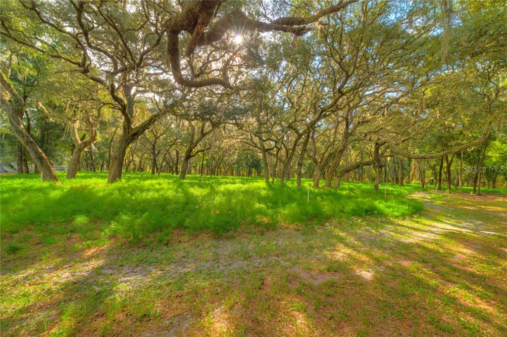 SHAW LAKE ROAD Property Photo - PIERSON, FL real estate listing