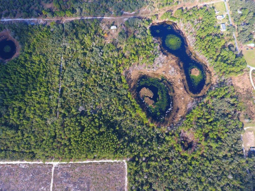 30079 Lake Mack Road Property Photo