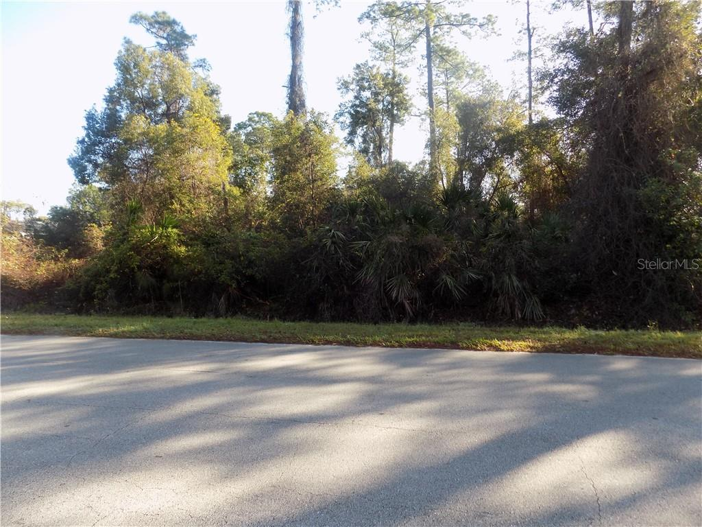 RAULERSON RD Property Photo - SEVILLE, FL real estate listing