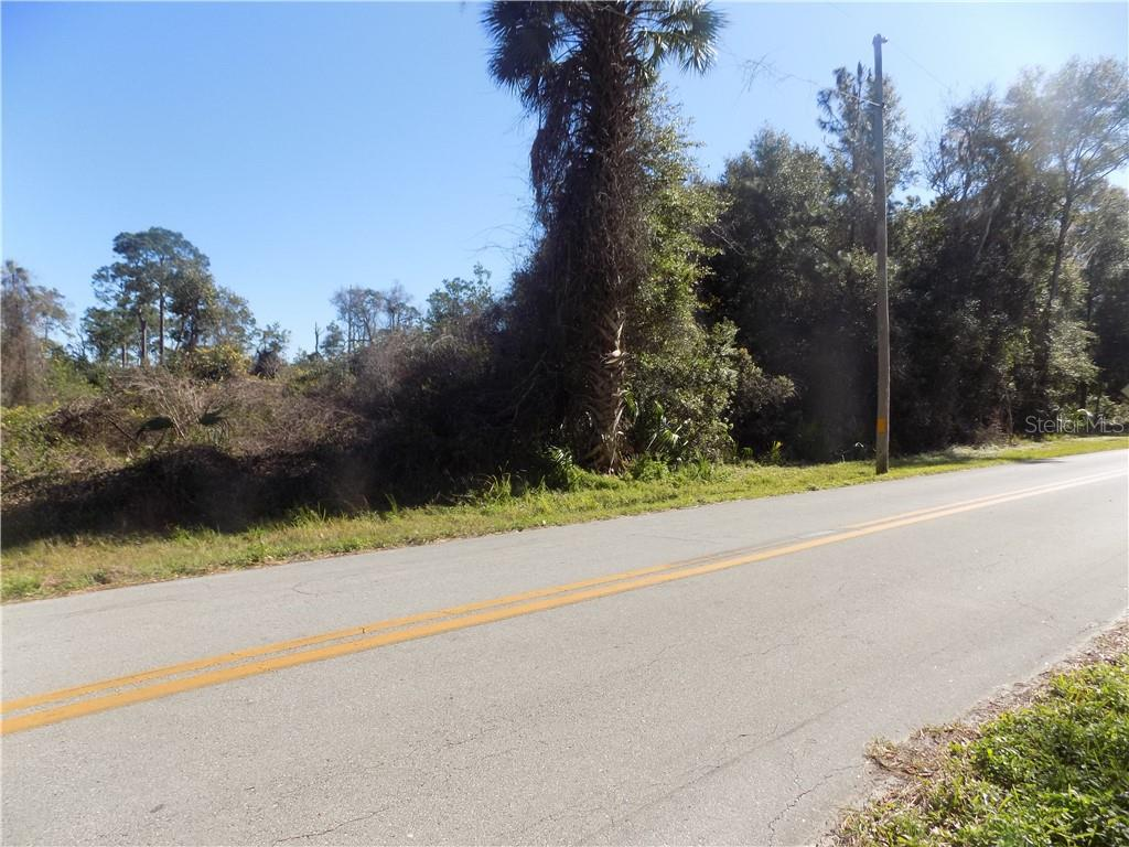 RAULERSON ROAD Property Photo - SEVILLE, FL real estate listing