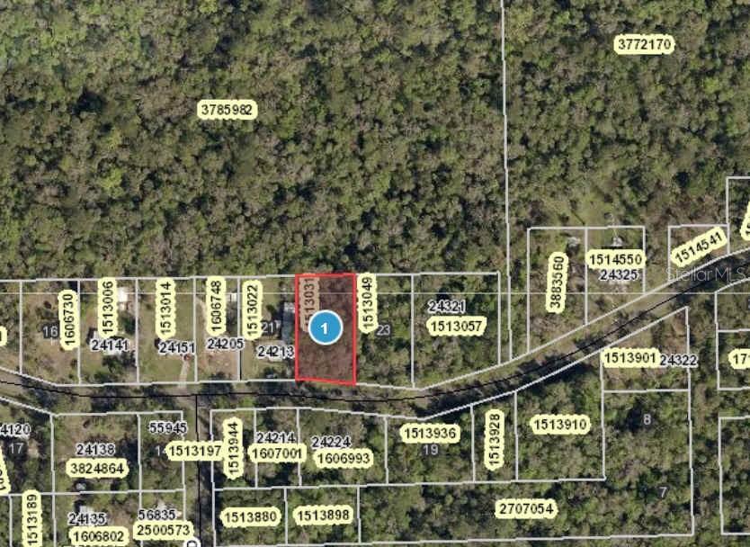 RIVER ROAD Property Photo - ASTOR, FL real estate listing