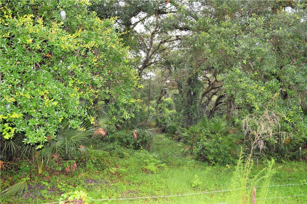 Osteen Maytown Road Property Photo