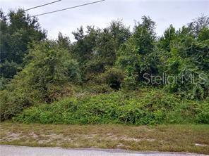 PENVAN AVENUE Property Photo - DE LEON SPRINGS, FL real estate listing