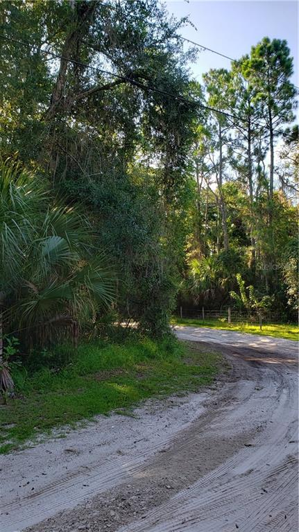 S GAINES STREET Property Photo - OAK HILL, FL real estate listing