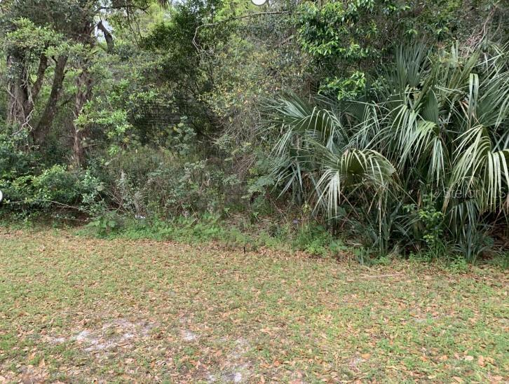 218 MANSION BOULEVARD Property Photo - DEBARY, FL real estate listing