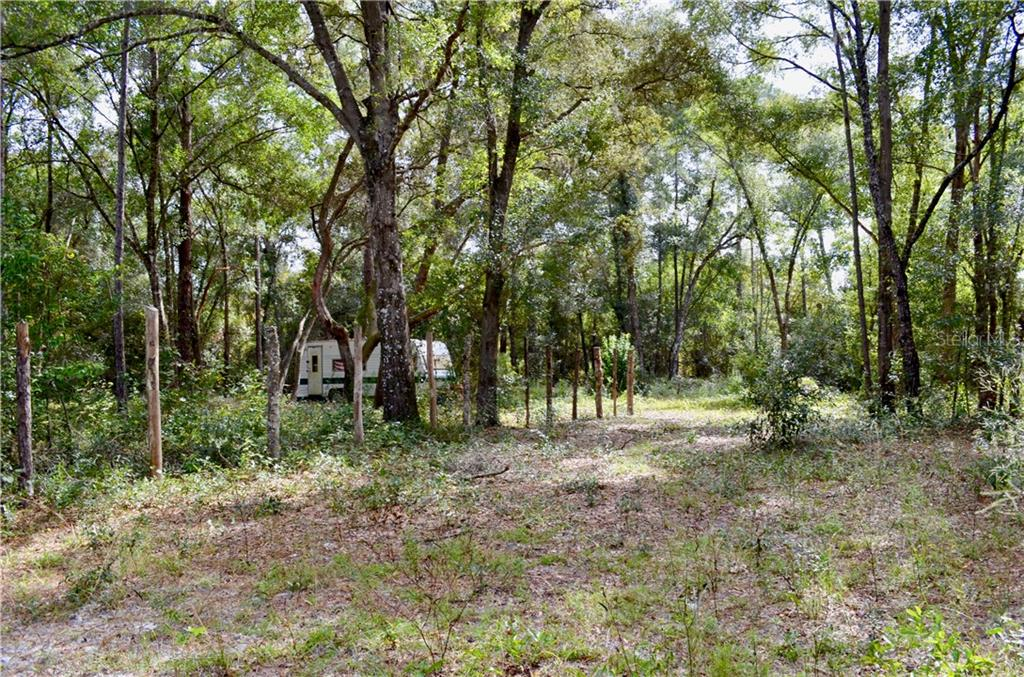 407 RAULERSON ROAD Property Photo - SEVILLE, FL real estate listing
