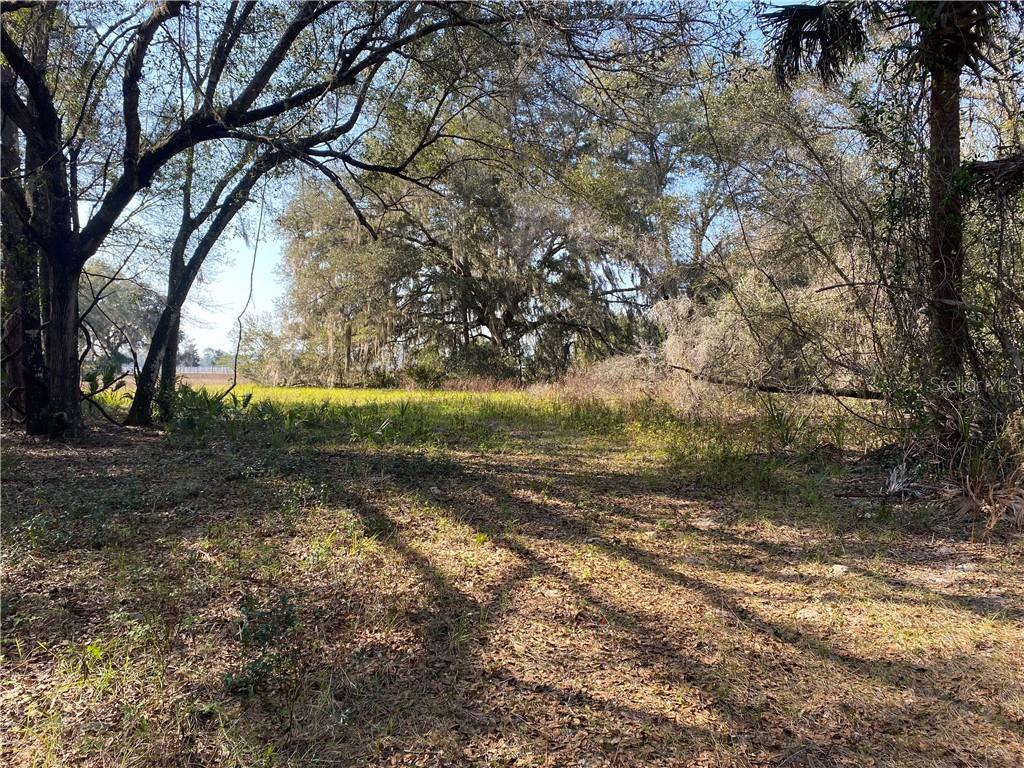 508 GEORGETOWN SHORTCUT ROAD Property Photo - CRESCENT CITY, FL real estate listing