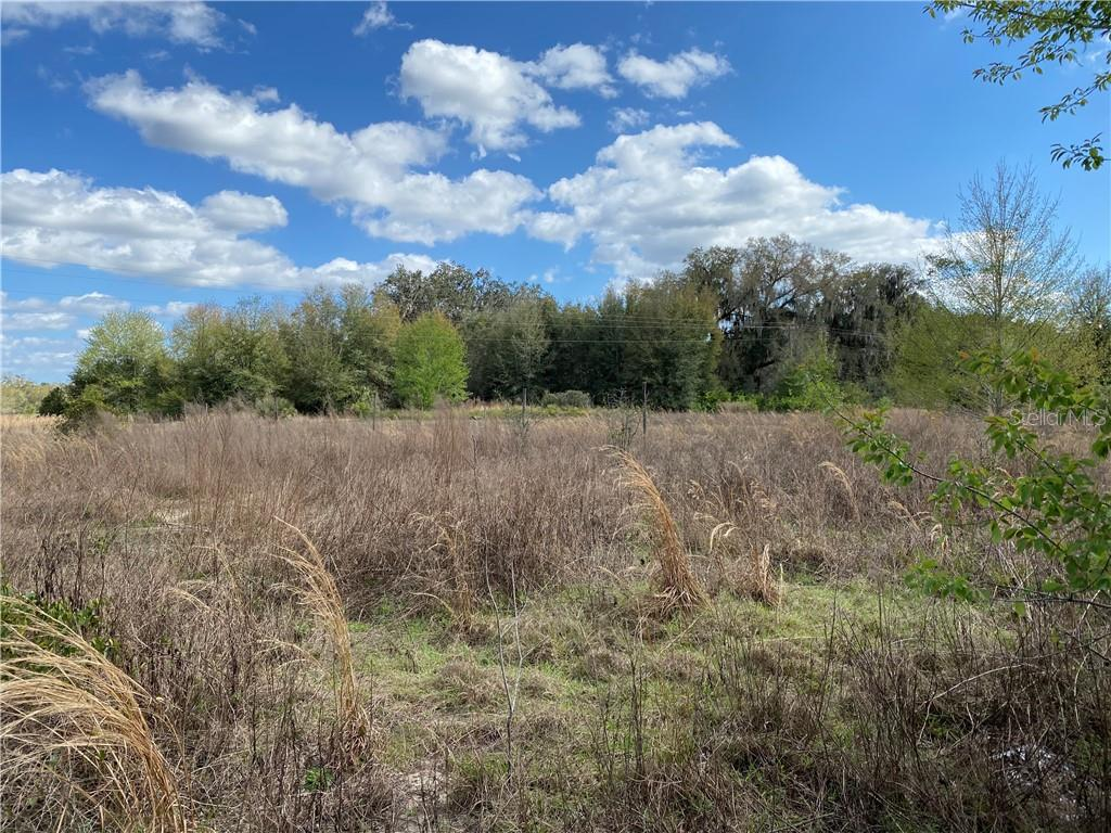 2188 BROWNLEE ROAD Property Photo - SEVILLE, FL real estate listing
