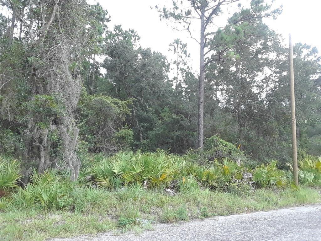 132 MILLICAN ROAD Property Photo - PALATKA, FL real estate listing