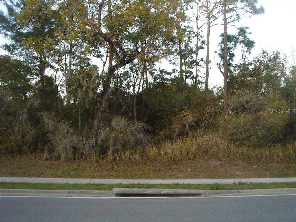 1318 Howland Boulevard Property Photo