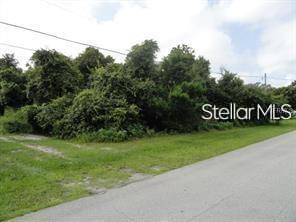 430 REYNOLDS ROAD Property Photo - DE LEON SPRINGS, FL real estate listing