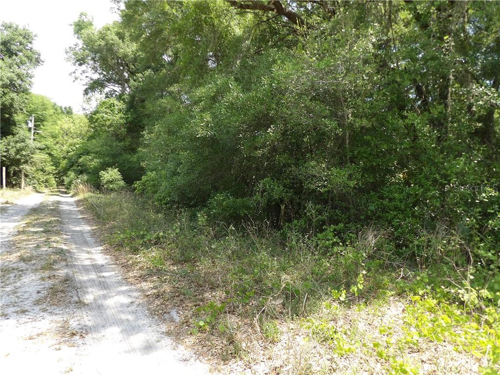 ELKRIDGE DRIVE Property Photo - MOUNT PLYMOUTH, FL real estate listing