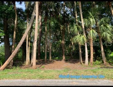 3185 Sandalwood Lane Property Photo 1