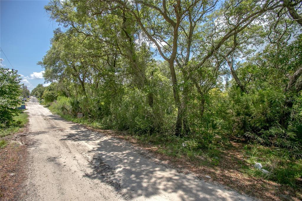 226 S Cedar Avenue Property Photo
