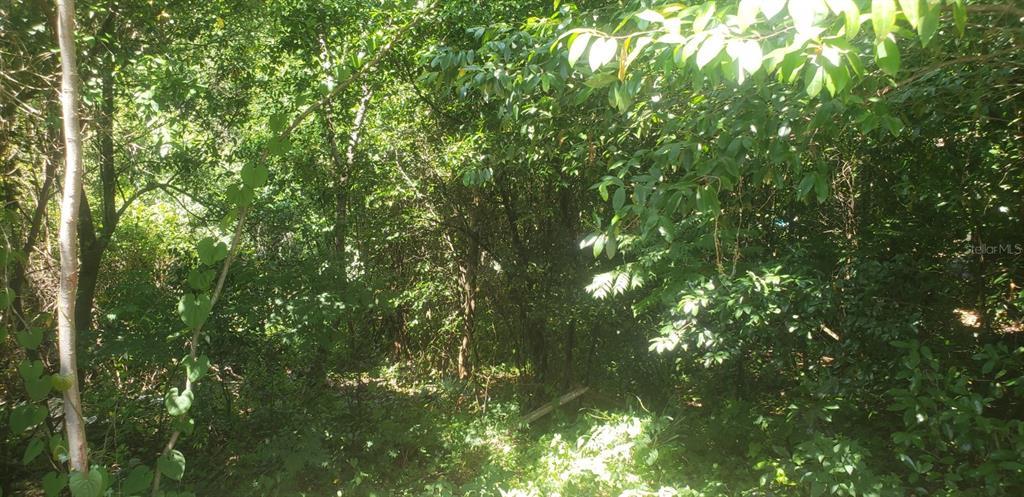 1622 N MERRICK DRIVE Property Photo 1