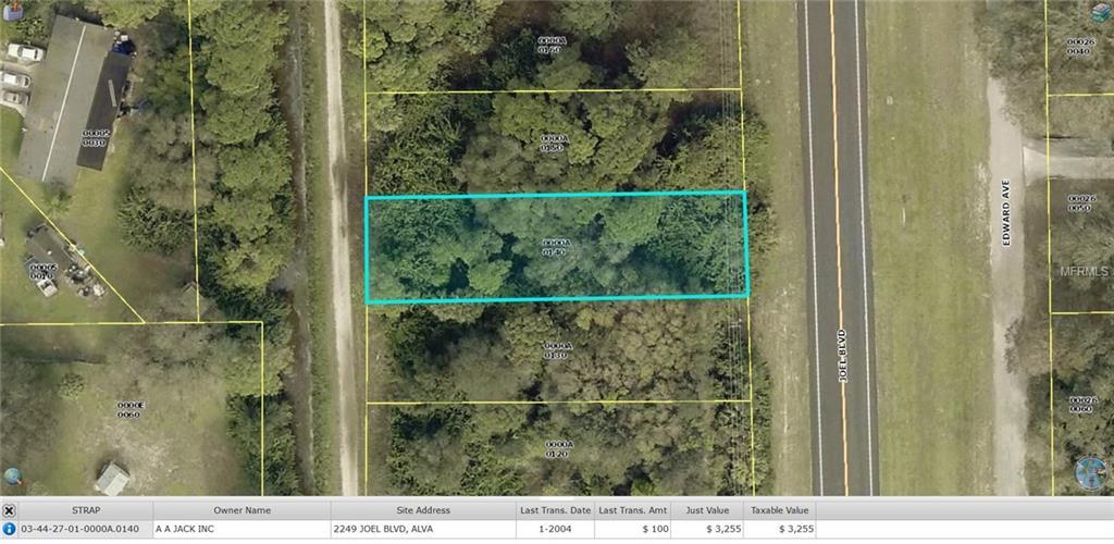 2249 JOEL BLVD Property Photo - ALVA, FL real estate listing