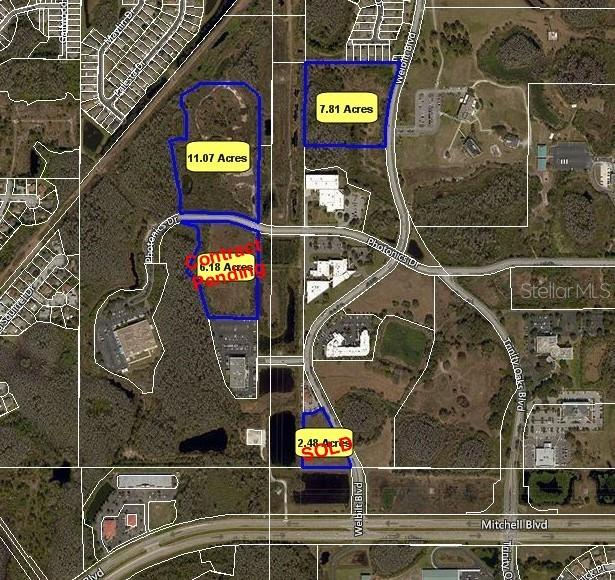 8008 PHOTONICS DRIVE Property Photo - TRINITY, FL real estate listing