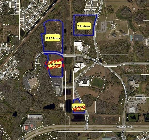 2425 WELBILT BOULEVARD Property Photo - TRINITY, FL real estate listing