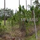 100 ACRES STATE RD 415 Property Photo - NEW SMYRNA BEACH, FL real estate listing