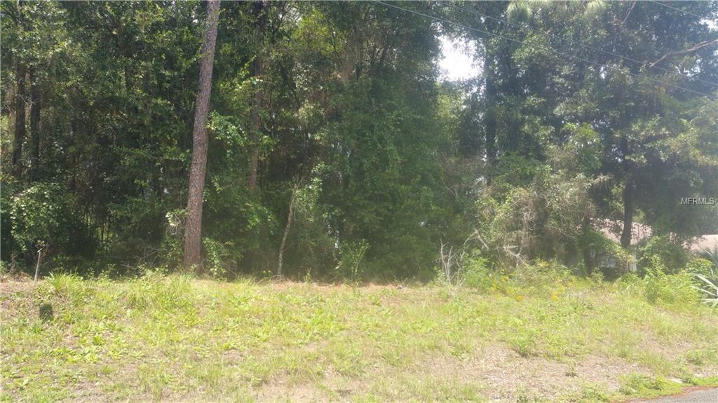 1129 AMHERST TER Property Photo