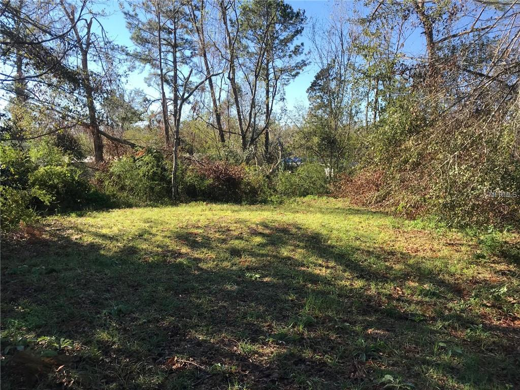 3039 NOLAND STREET Property Photo - MARIANNA, FL real estate listing
