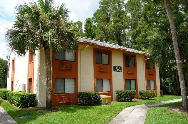 20861 HAULOVER CV #C4 Property Photo - LUTZ, FL real estate listing