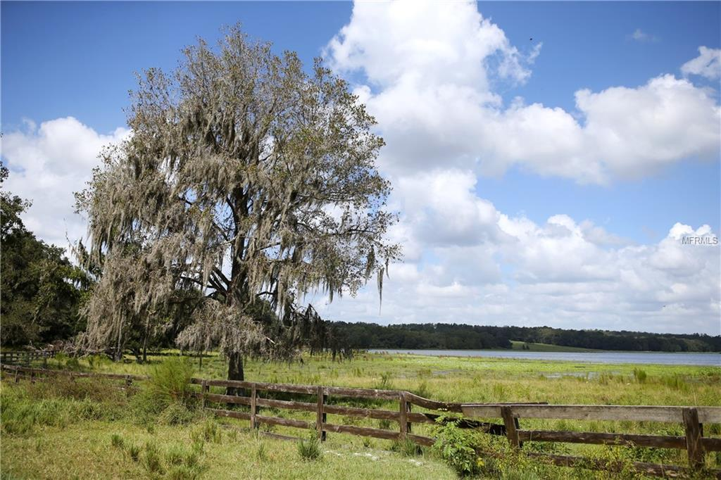 2461 FAIR FORTUNE LANE Property Photo - BROOKSVILLE, FL real estate listing