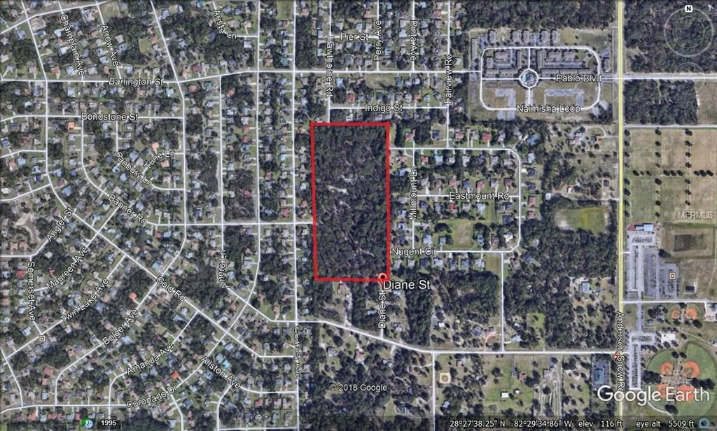 1471 DIANE ST Property Photo - SPRING HILL, FL real estate listing