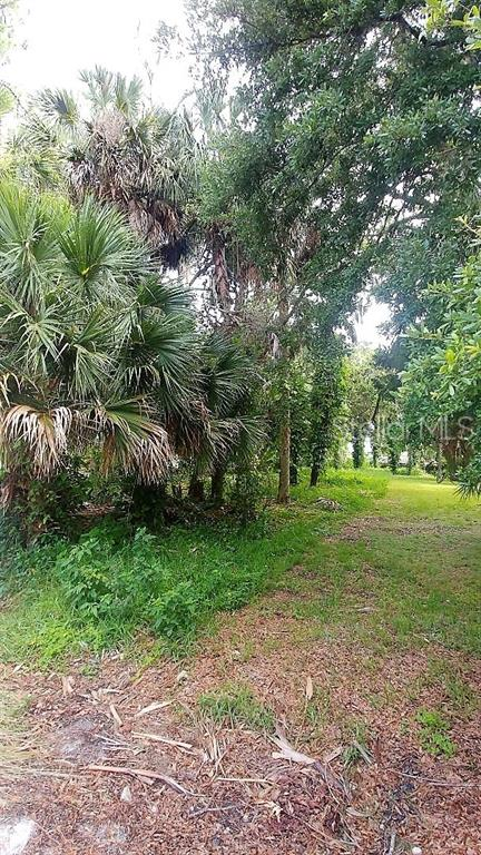 0 Miller Bayou Drive Property Photo